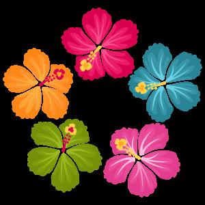 Hibiscus Clip Art Flowers