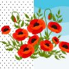 Vector Illustrations Poppy Flowers