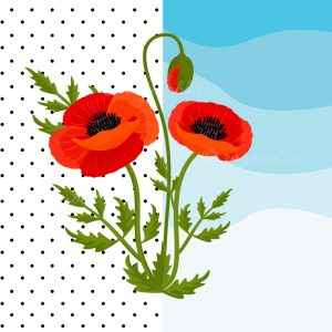 Poppy Flowers Vector Illustrations